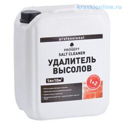 PROSEPT SALT CLEANER - удалитель высолов